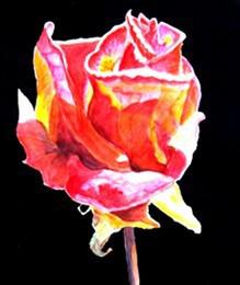 Vissen rose - Anette Ploug Kunst